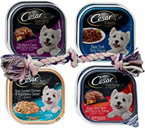 Cesar Dog Food 4 Flavor 8 Can with Toy Bundle, (2) Each: Filet Mignon Bacon, NY Strip, Slow Cooked Chicken, Angus Beef Bacon (3.5 Ounces)