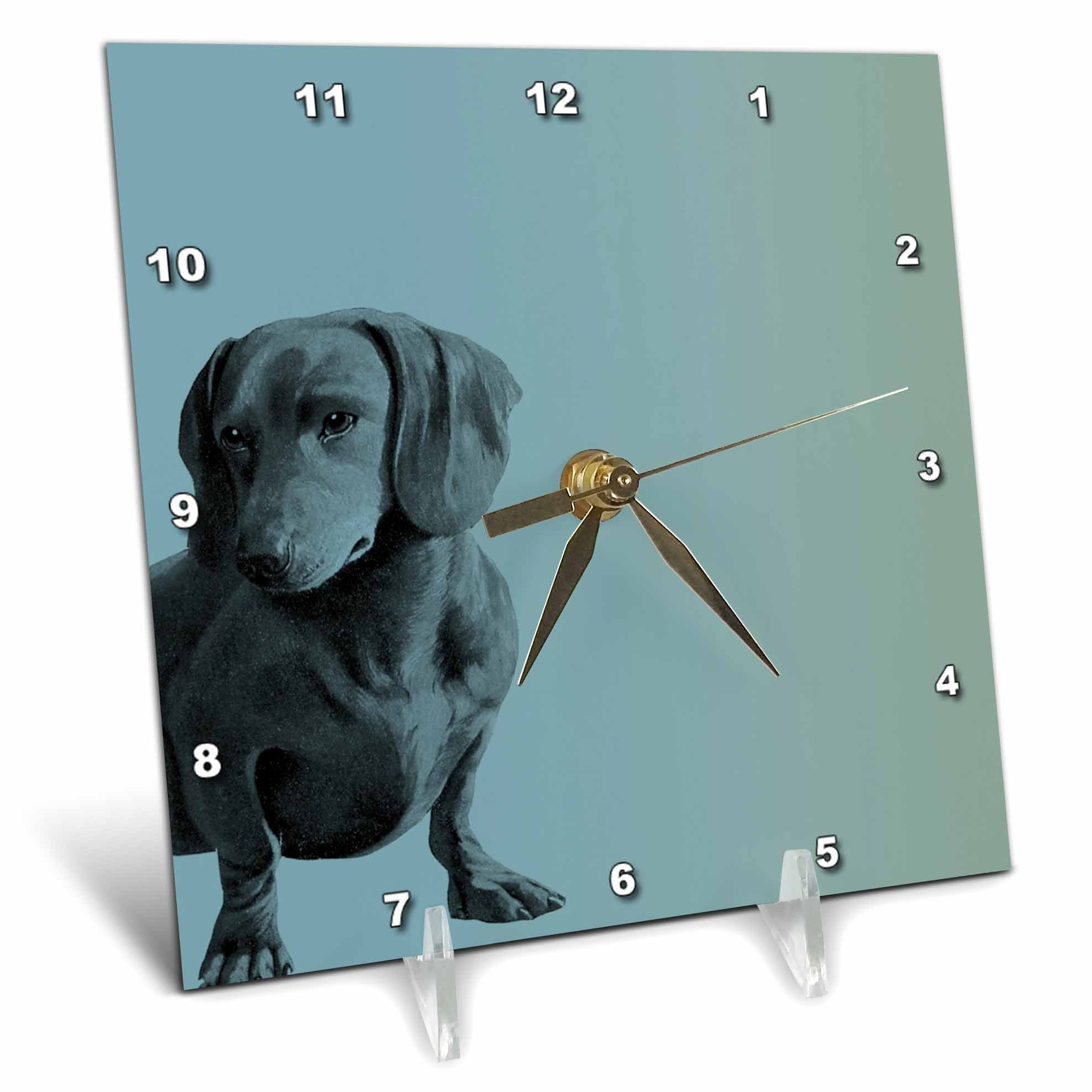 3dRose dc_130560_1 Adorable Daschund Dog Pets Animals Desk Clock, 6 by 6-Inch