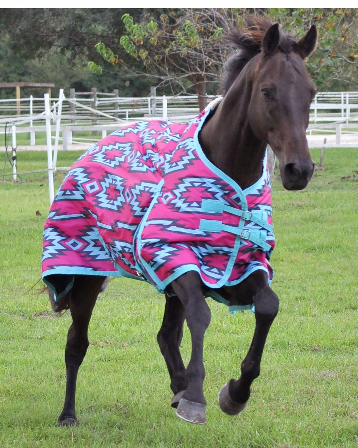 Jeffers 600D Aztec Expression Horse Turnout Blanket, 240g by Jeffers