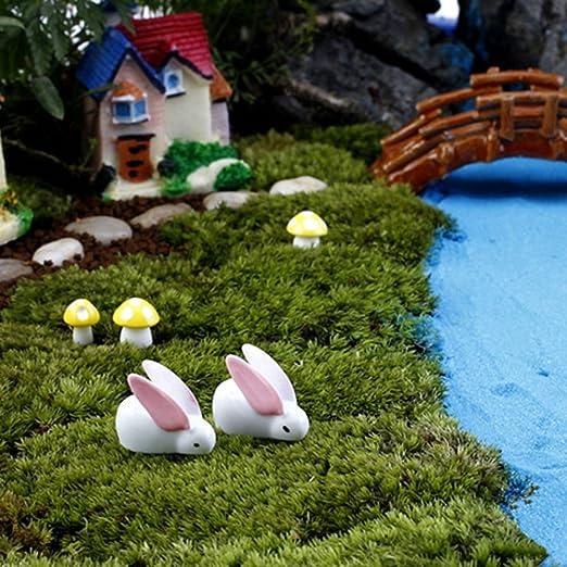 Mini conejo jardín decoración adorno de figuras de jardín miniatura de resina Micro paisaje: Amazon.es: Jardín