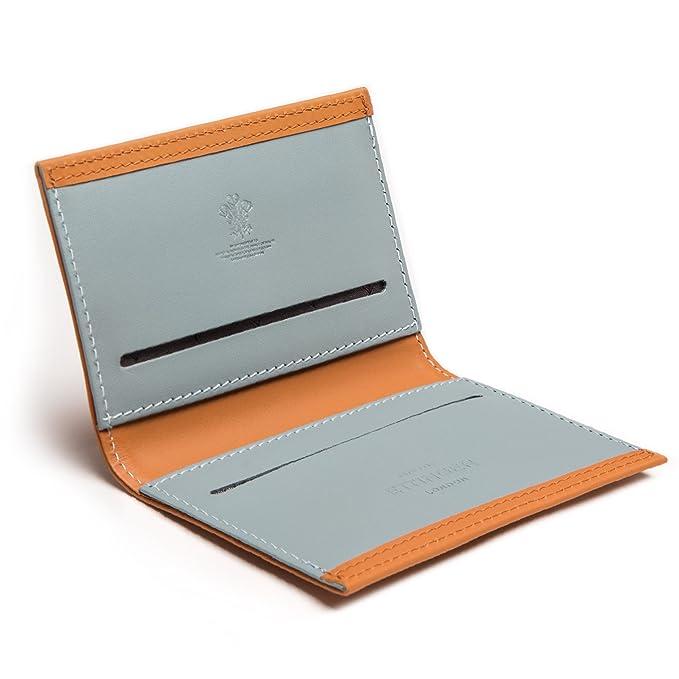 Amazon.com: Ettinger TT tarjeta de crédito Case, azul ...