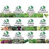 "Golden autumn farm- ""Green Box"" NON-GMO, Non Hybrid 12 Varieties/Vegetable/Herb/Flower Seeds"