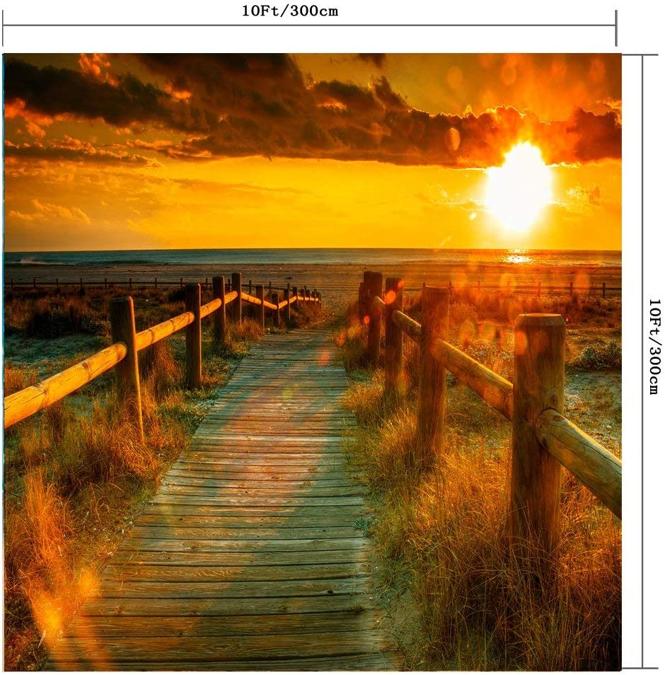 GoHeBe 10x10Ft Seamless Drought Land Vinyl Photography Backdrop Photo Background Studio Prop PGT086B