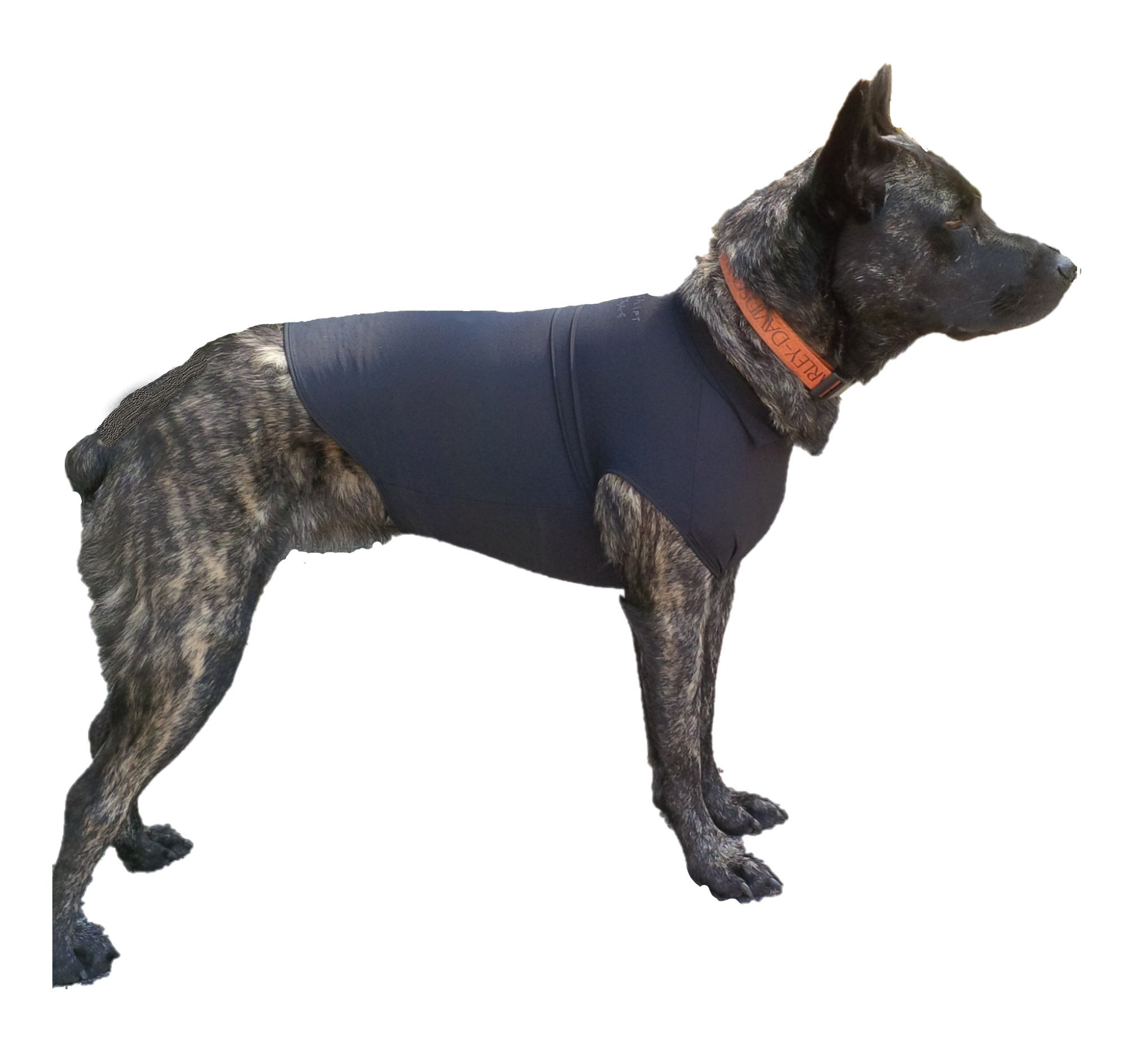 Swaddleshirt Anti Anxiety Vest For Dogs | The Best Weight Vest For Dog Anxiety Relief. Effectively Calm Dogs during Thunderstorms, Fireworks, Travel, And More. (Black, Medium)
