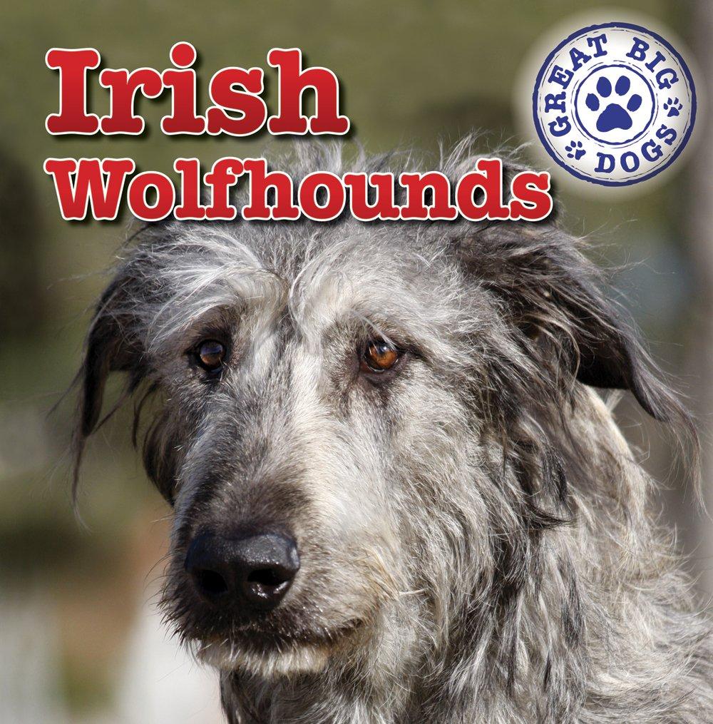 Download Irish Wolfhounds (Great Big Dogs) pdf