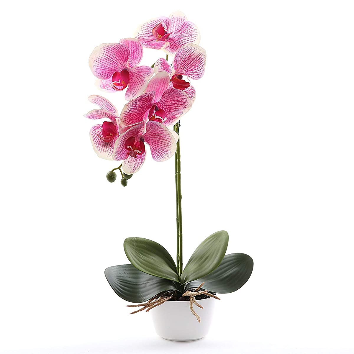 Livilan Silk Phalaenopsis Flower Arrangement, Artificial Orchid Flowers with White Vase, Wedding Party Home Centerpiece Decor (Fuchsia)