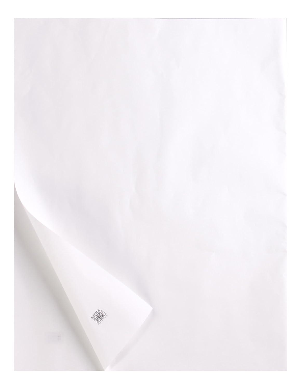 Clairefontaine 975145C Ries Transparentpapier (50 x 65 cm, 10 Blatt, 400 g, ideal für technische Zeichnen) transparent B06ZZMNPW9  | Moderne Technologie