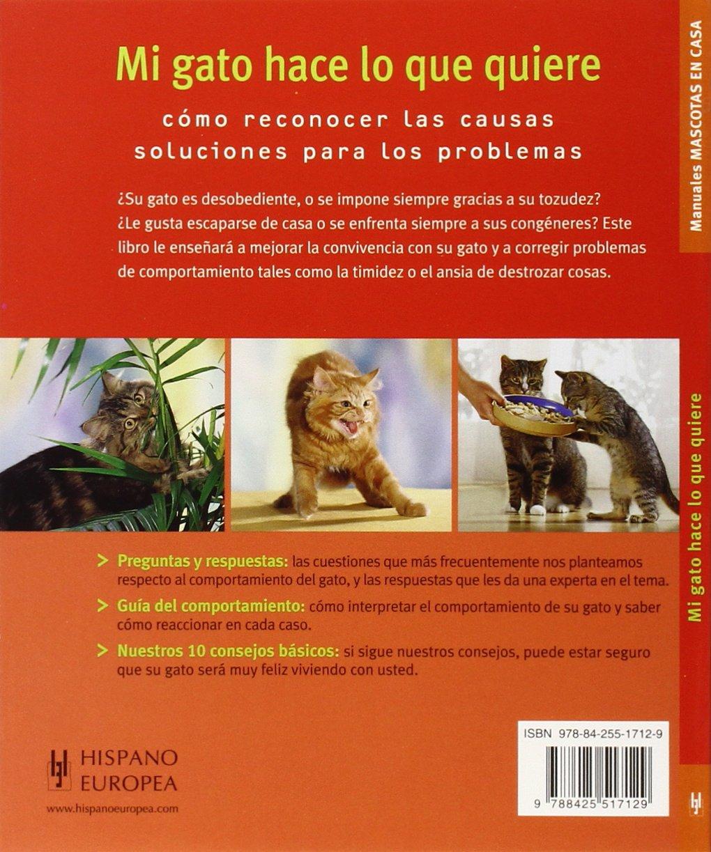 Mi gato hace lo que quiere. Mascotas en casa (Mascotas En Casa / House Pets) (Spanish Edition): Helga Hofmann: 9788425517129: Amazon.com: Books
