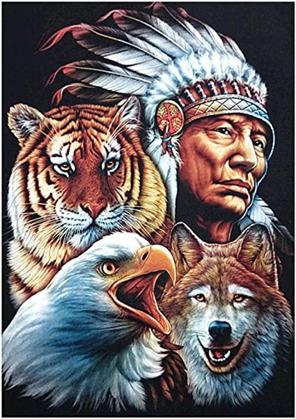DIY Diamond Painting Kits for Adults Dreamcatcher Wolves Full Drill Rhinestone Embroidery Cross Stitch Supply Arts Craft Canvas Wall Decor 11.8x15.8 inch