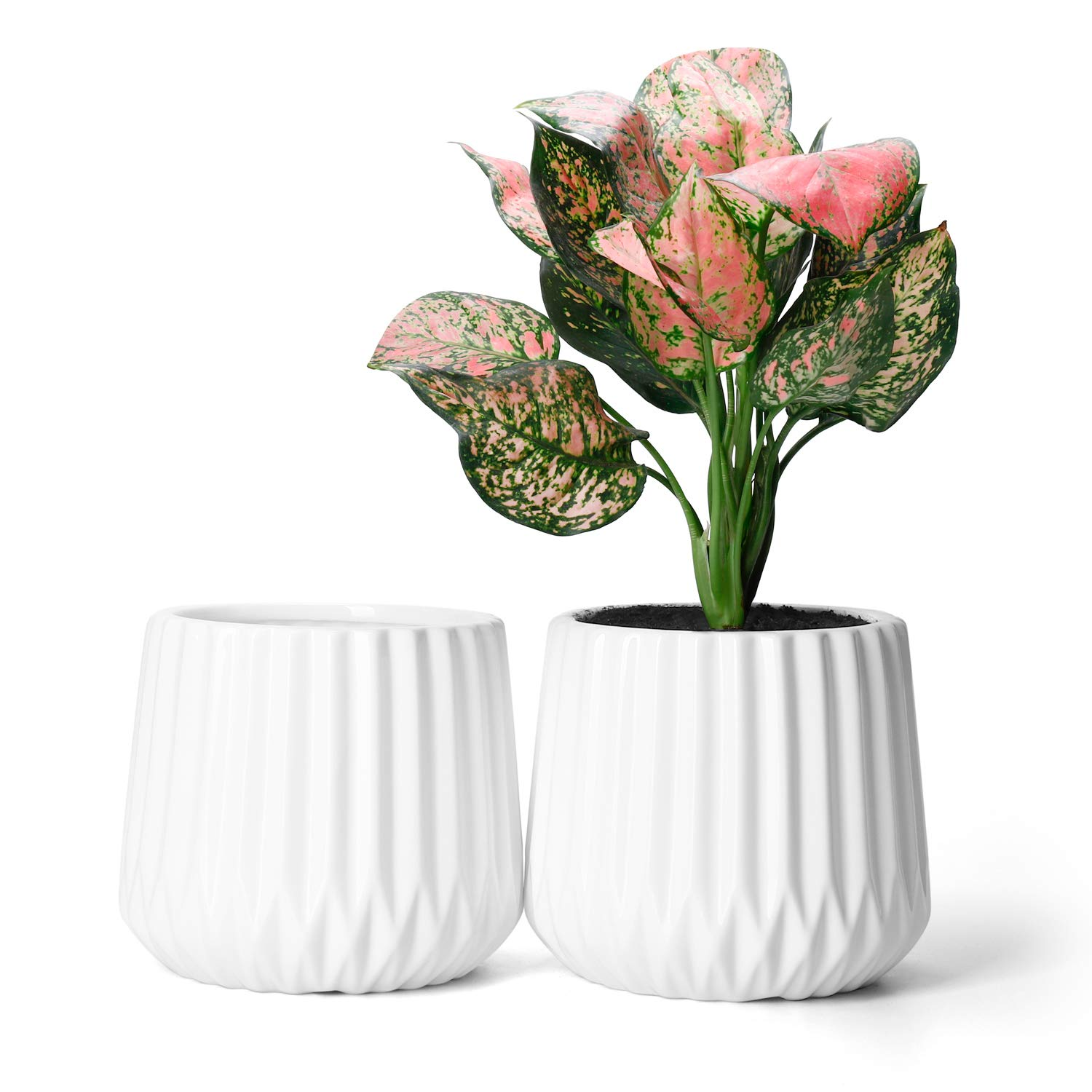 Potey Ceramic Planters Plant Flower Pots – 4.7 with Drain Hold Medium Container Decorative Flowers Enough Space – Set of 2, Pure White