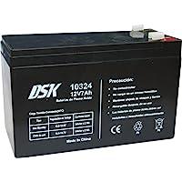 DSK 10324 - Batería plomo acido 12V 7 Ah, Negro