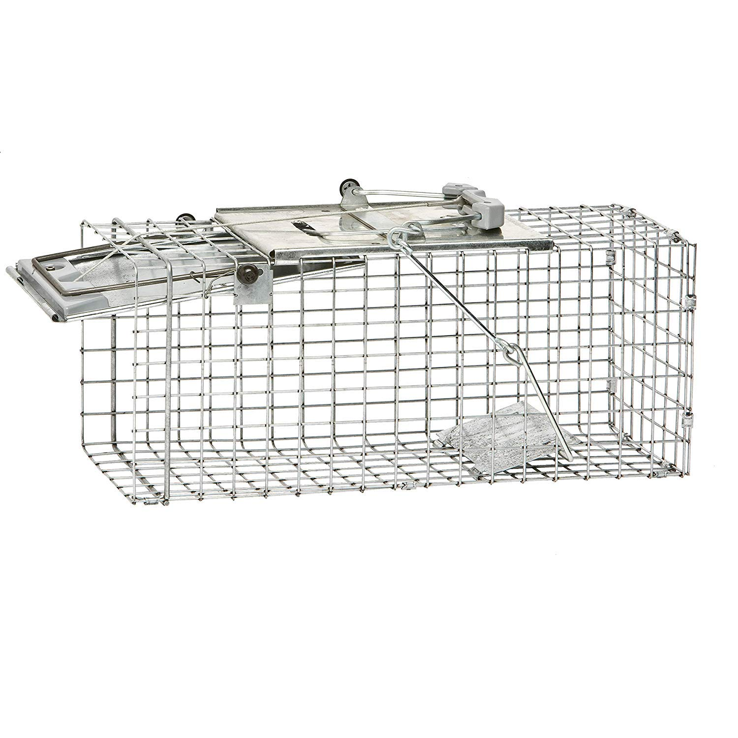 Havahart 1083 Easy Set One-Door Cage Trap for Squirrels and Small Rabbits (Pack of 2) by Havahart