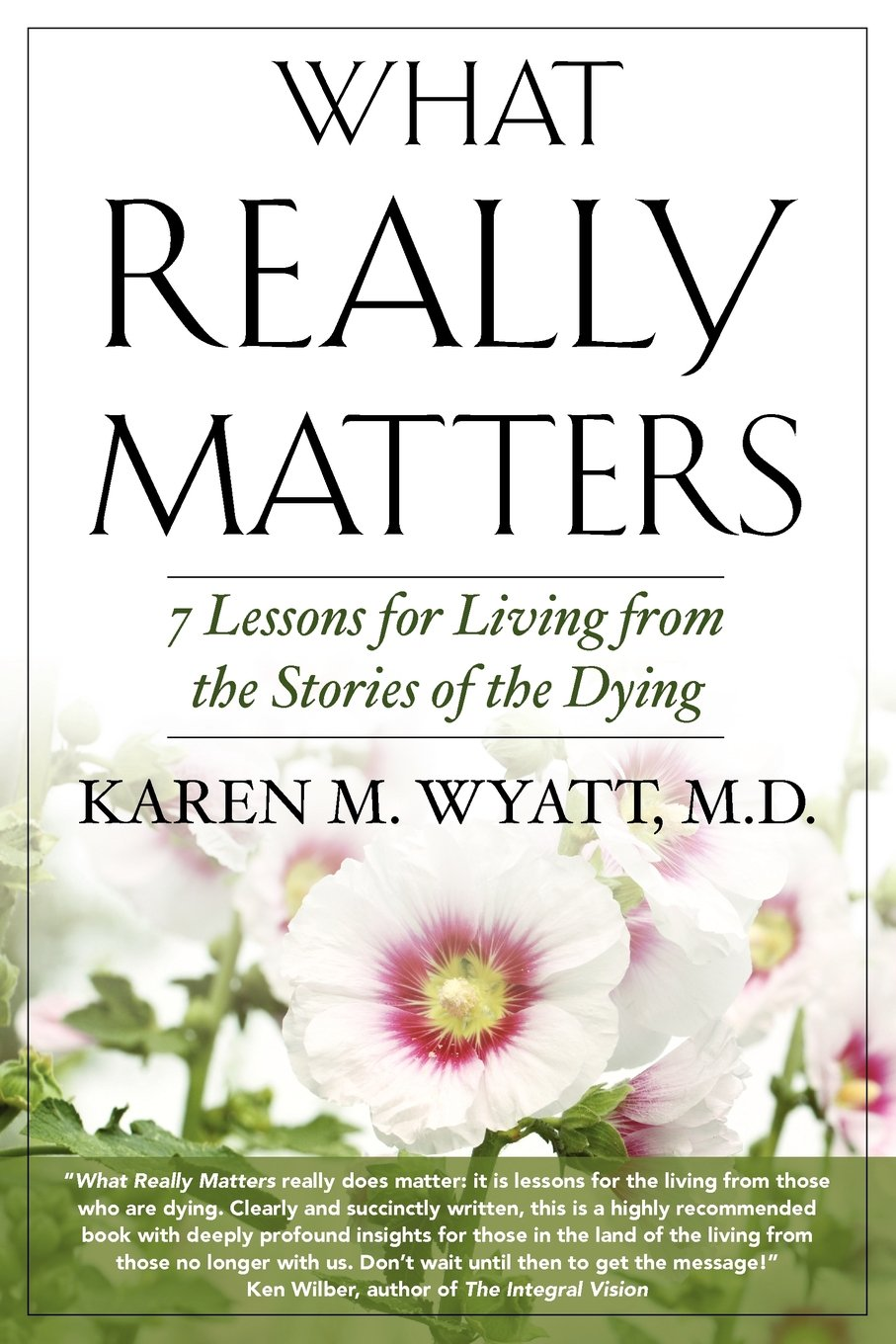 Download What Really Matters: 7 Lessons for Living from the Stories of the Dying pdf