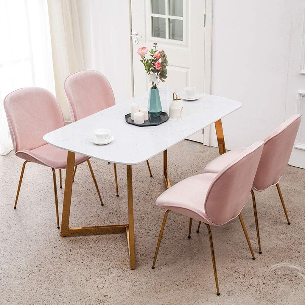 PRIDE S Chaise de salle à manger design minimaliste moderne chaise de maquillage café chaise étude de la maison chambre chaise Chaise de salon (Color : E) G