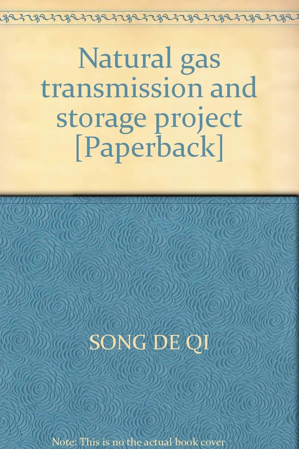 Natural gas transmission and storage project [Paperback] ebook