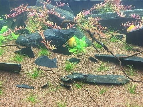 Retne-Schieferplatten-Schiefersteine-Splitt-Aquarium