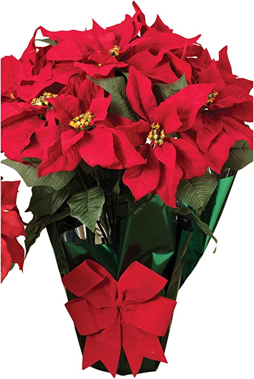 Amazon Com Ac 22 Potted Red Poinsettia Plant With 10 Flowers And