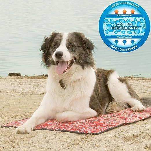 13 opinioni per Aqua cool Keeper cani Matte-Modello: Red Western
