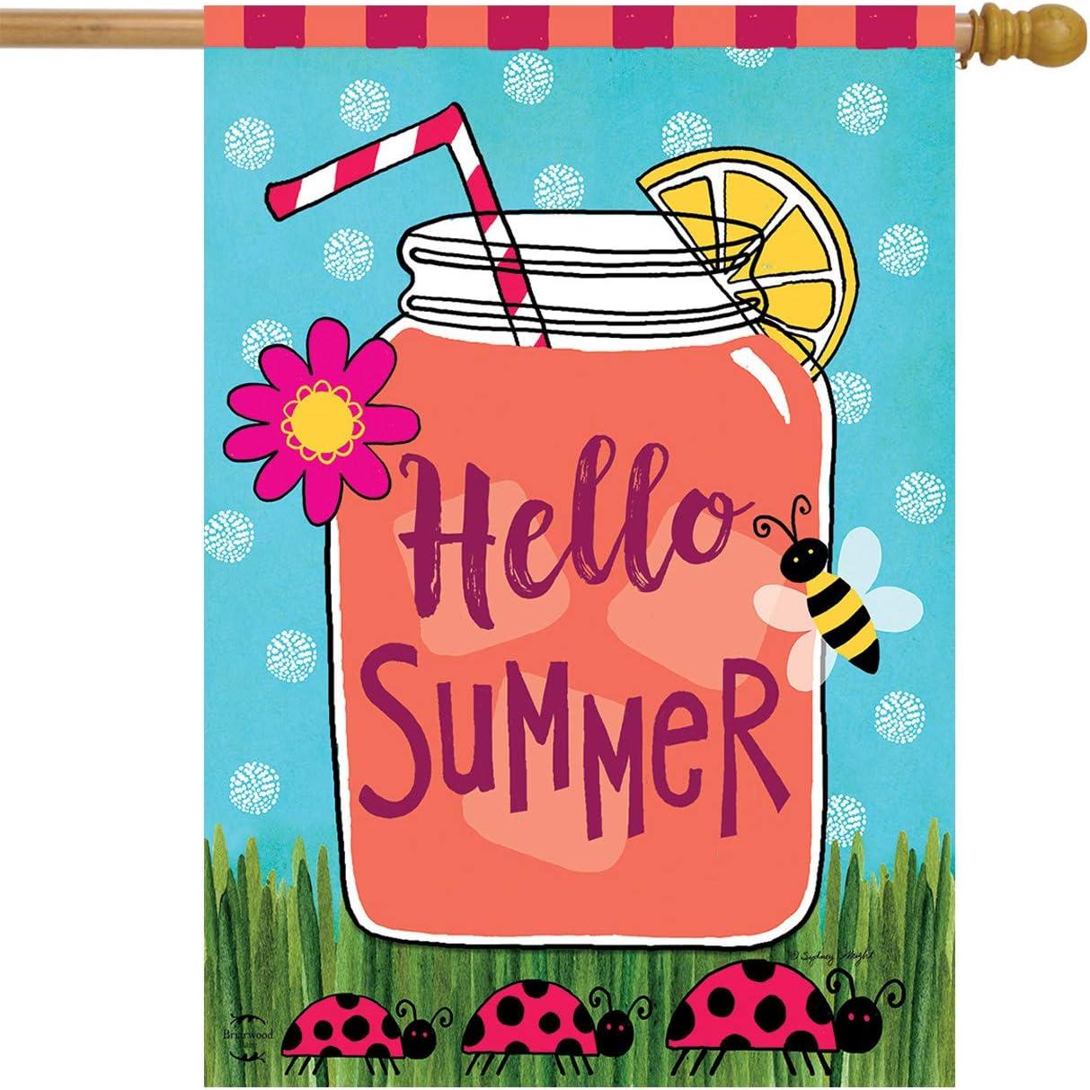 """Briarwood Lane Welcome Summer Lemonade House Flag Mason Jar Ladybugs 28"""" x 40"""""""