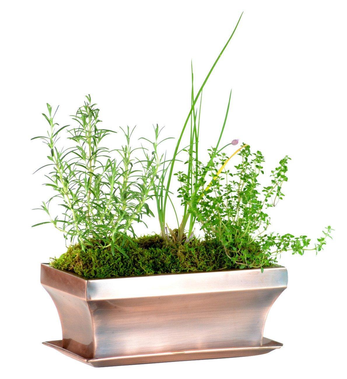 H Potter Rectangular Planter with Antique Copper Finish, Indoor Outdoor Garden Pot & Plant Window Box for Succulent Flowers & More, 12'' x 6'' x 6'', GAR554