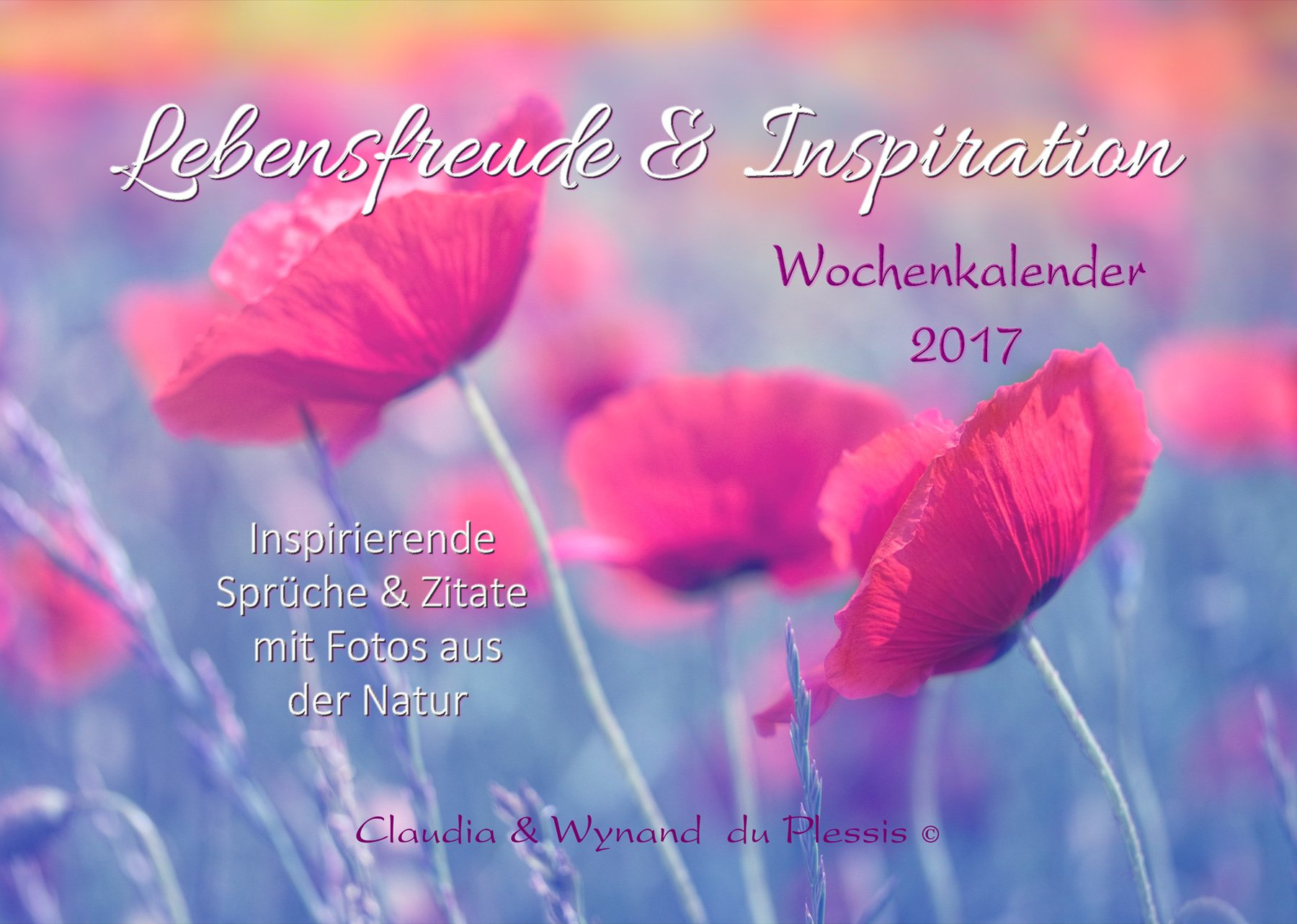 LEBENSFREUDE & INSPIRATION 2017 Wochenkalender: Inspirierende