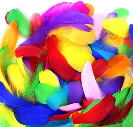 Feathers for DIY Crafts Bright Colors M-Aimee 500pcs Natural Feathers