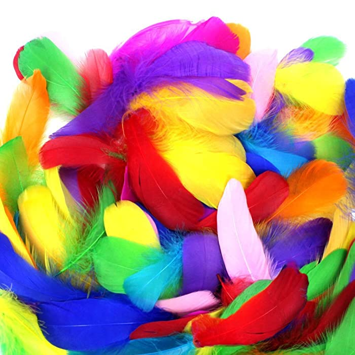 Coceca 300pcs 3-5 Inches Colorful Feathers for DIY Craft Wedding Home Party Decorations