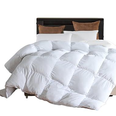 Microfiber Comforter (White,Queen) - Premium Brushed Microfiber Cover- Hypoallergenic Plush Down Alternative Comforter Duvet Insert by LLOVSOUL (90x90 inches)