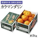 復興支援 カラマンダリン 訳あり 大きさおまかせ 約3kg JAえひめ中央 愛媛県 中島産 みかん