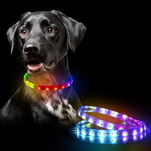 Pssopp Collar de Perro LED medianos y Grandes USB Recargable Que Brilla intensamente Collar de Perro de Mascota Luz de Seguridad Collares de Nylon Collares para Perros peque/ños Azul, L