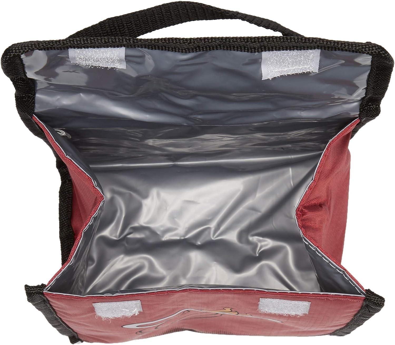 FOCO NCAA Unisex-Adult Gradient Lunch Bag
