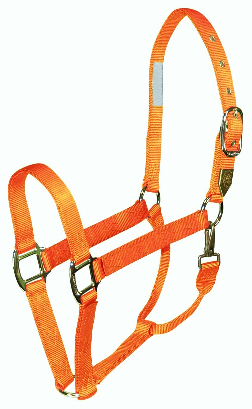 Hamilton, 1  Halter with Snap Mango, 800-1100lbs