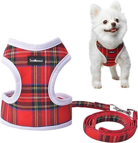 Arnés y correa para perro pequeño, chaleco ajustable para ...