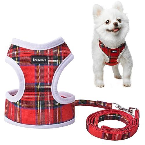 Cute Dog Harness Amazon Co Uk