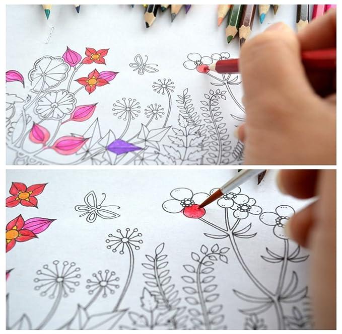 Lápices de acuarela para adultos Libros para Colorear, dibujar ...