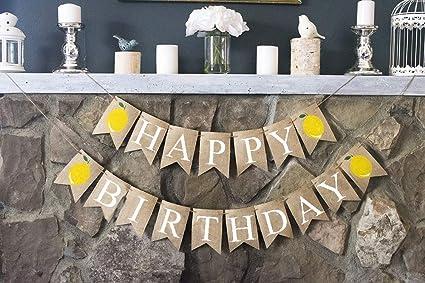Amazon.com: Lemonade Party Decor, Lemon Happy Birthday Banner ...