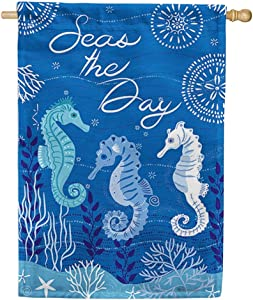Custom Decor Seahorse Trio - Standard Size, 28 x 40 Inch, Decorative Double Sided, Licensed and Copyrighted Flag, Printed in The USA