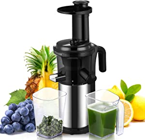 Slow Masticating Juicer Easy to Clean Geek Chef Cold Press Juicer with Quiet Motor and Reverse Function, Compact Design Juicer Extractor for All Fruits and Veggies (Silver)