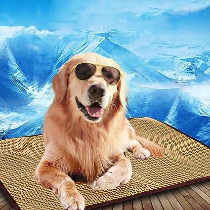 Amazon Com Pet Mat Washable Mat Dog Rattan Kennel Cool Pad