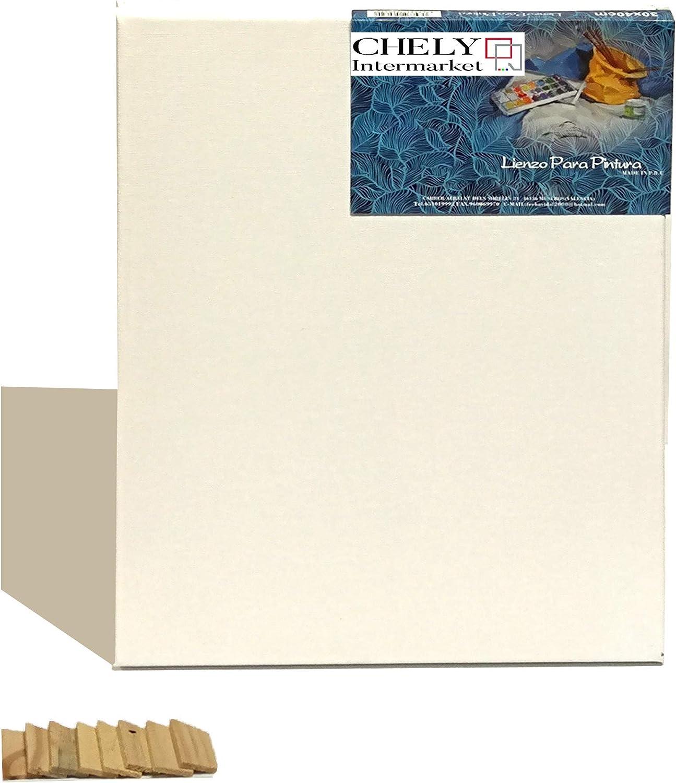 Chely Intermarket, Lienzos para pintar 50x120 cm Perfil 16mm | 380 grs | Apto óleo, acrílico o técnica mixta Pre-estirado 100% algodón/Libre de Ácido/Hebra Media/Color blanco(560-50x120-3)