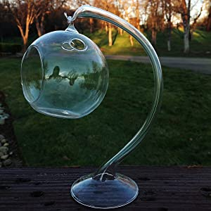 Hanging Round Clear Glass Sphere for Small Succulents, Air Plant or Rock Garden with Glass Stand