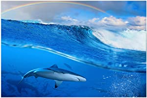 """Fantasy Staring Aquarium Background Shark Under Ocean and Rainbow in The Sky Fish Tank Wallpaper Easy to Apply and Remove PVC Sticker Pictures Poster Background Decoration 20.4"""" x 48.8"""""""