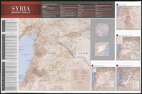 Amazoncom 2011 map Syria country profileSize 16x24 Ready to