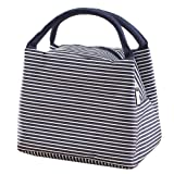 Lunch Bag Tote Bag / Reusable Lunch Organizer / Waterproof Lunch Holder Container by Pingenaneer (Blue stripes)