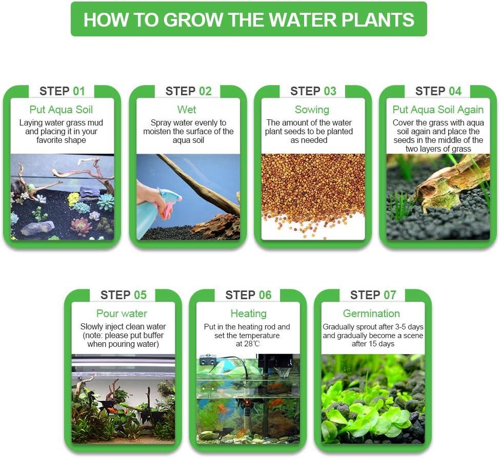Semillas de Plantas de Acuario # 3 Mini Plantas Hoja Hierba Tanque de Peces Paisajismo Decorativo Adecuado para Acuario
