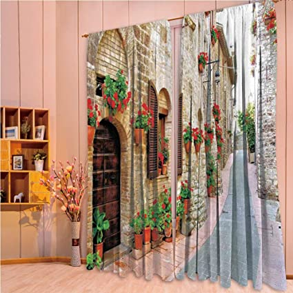 Amazon.com: Bedroom Decor Collection Window Curtains for ...
