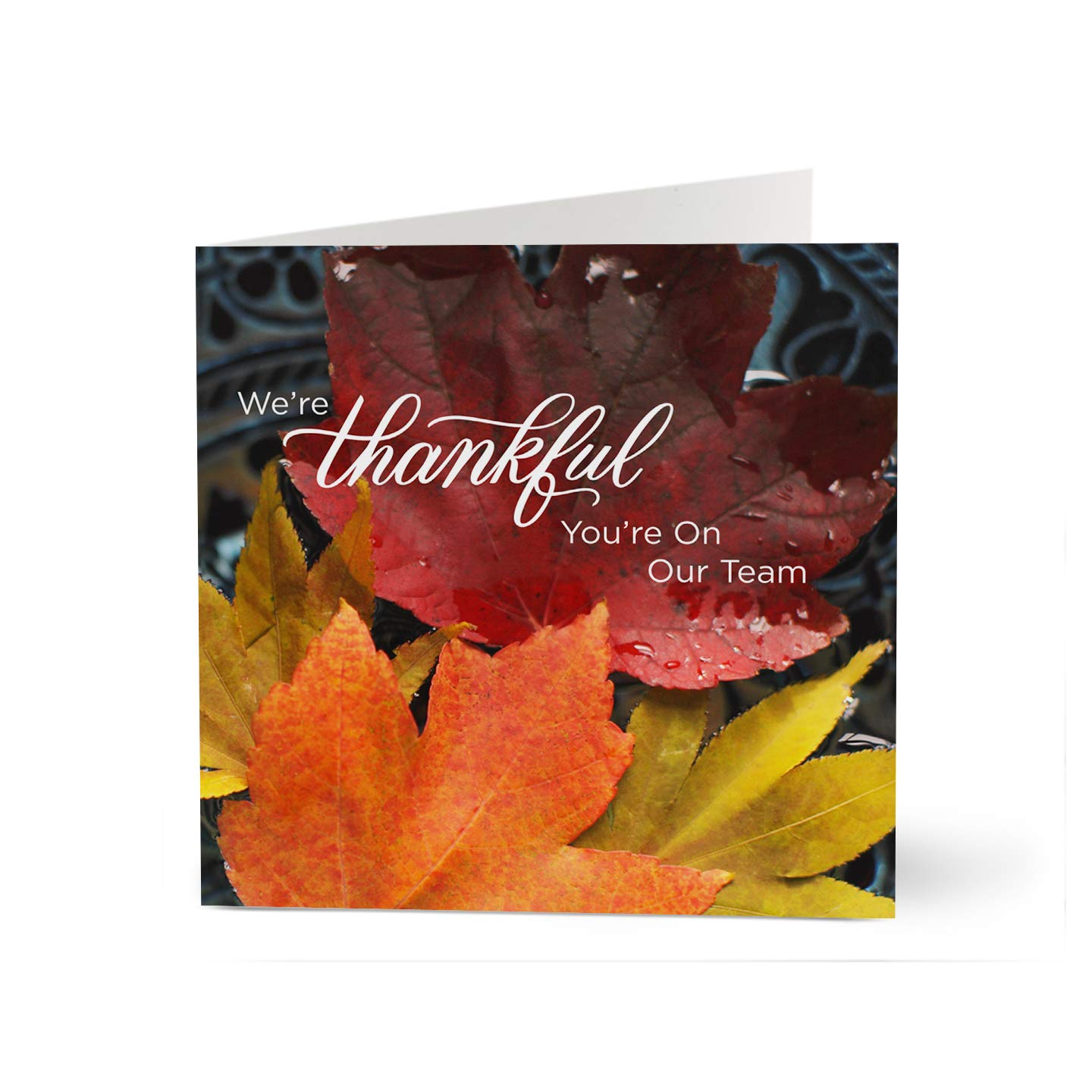 Hallmark Business Thanksgiving Cards for Employee Appreciation (Thankful Team) (Pack of 25 Greeting Cards) by Hallmark Business Connections