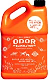 ANGRY ORANGE Ready-to-Use Citrus Pet Odor Eliminator Pet Spray - Urine Remover and Carpet Deodorizer for Dogs and Cats (1 Gallon)