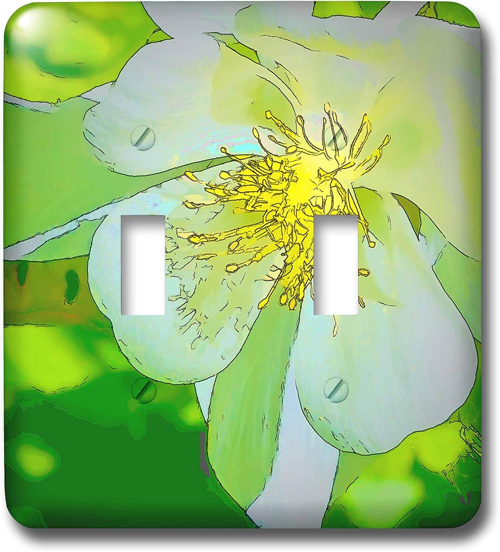 3drose Lsp 32393 2 Decorative Colorful Garden Botanic Plant Columbine Pastel Cartoon Flower Macro Toggle Switch Green Gold Abstract Switch Plates Amazon Com