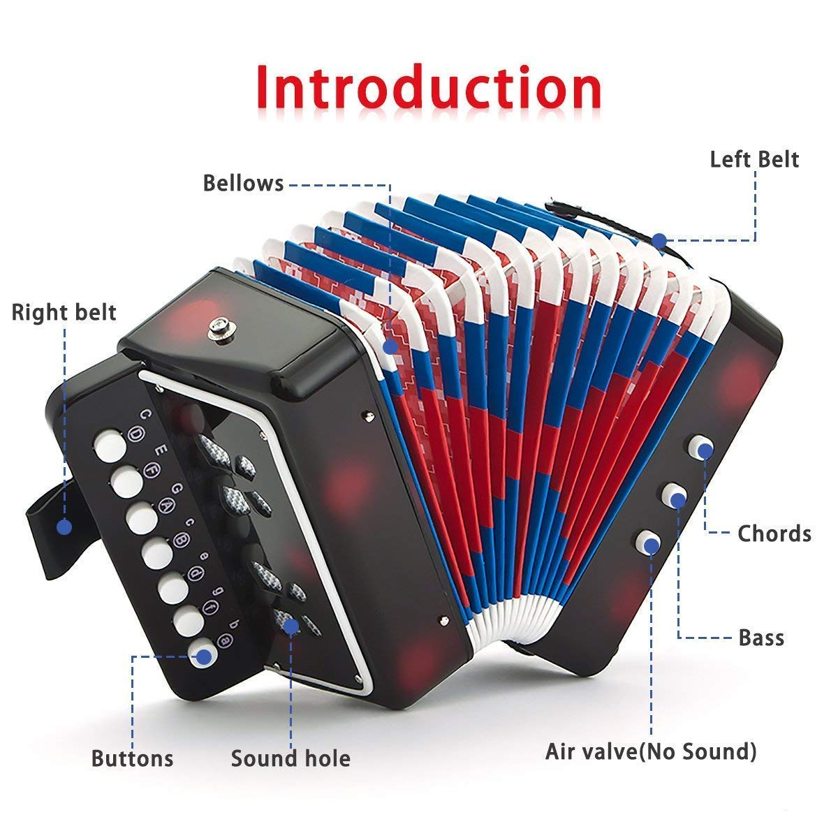 Children Musical Toy Instrument - 7 Keys 2 Bass Kid's Toy Accordion Rhythm Band Toy for Beginner Children Birthday's Gift by DigitalLife (Image #4)